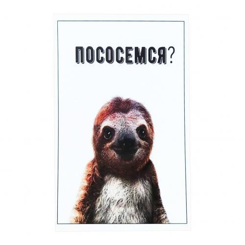 открытки с ленивцами почему многие